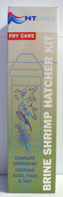 NT Labs Brine Shrimp Hatcher Kit