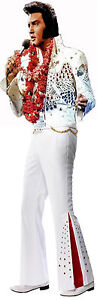 ELVIS PRESLEY KING OF ROCK AND ROLL LIFE SIZE IMAGE ON QUALITY CANVAS 24X74 INCH