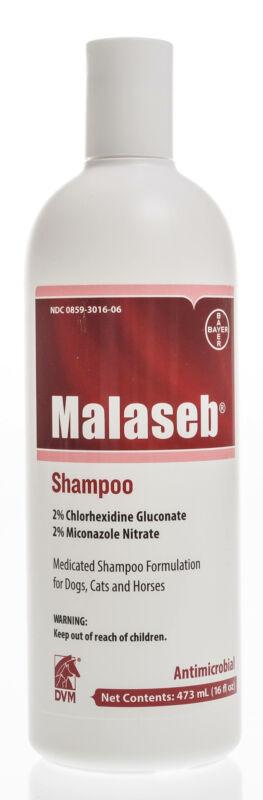 Malaseb Shampoo, 16 oz