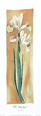 HAZEL BURROWS All Alone Am I Contemporary IRISES art SIZE:48cm x 13cm  RARE