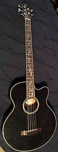5 String Acoustic/Electric Bass Guitar (Michael Kelly Dragonfly)