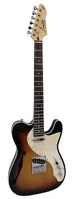 NEW Firefly FFTH firefly Semi-Hollow body Guitar Electri Gutiar (Sunburst Color)