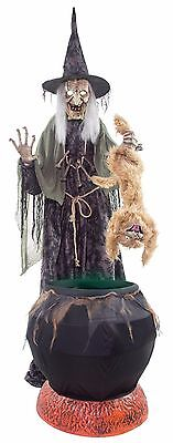 Halloween Lifesize Animated SINISTER WITCH CAT-TASTROPHE CAULDRON Haunted Prop  (Animated Halloween Witches)