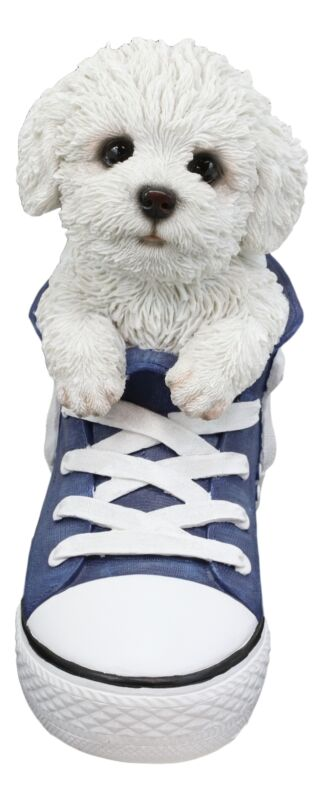 Paw-Star Pups Lifelike Bichon Frise Puppy Dog in Sneaker Chucks Shoe Statue