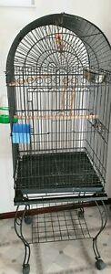 large medium bird cage