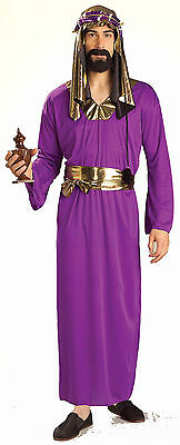Purple Wise Man - Adult Nativity / Christmas Costume