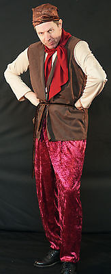 Snow White-Sneezy-Bashful-Happy-Sleepy-Grumpy DWARF/GNOME Fancy Dress Costume ](Grumpy Dwarf Costume)