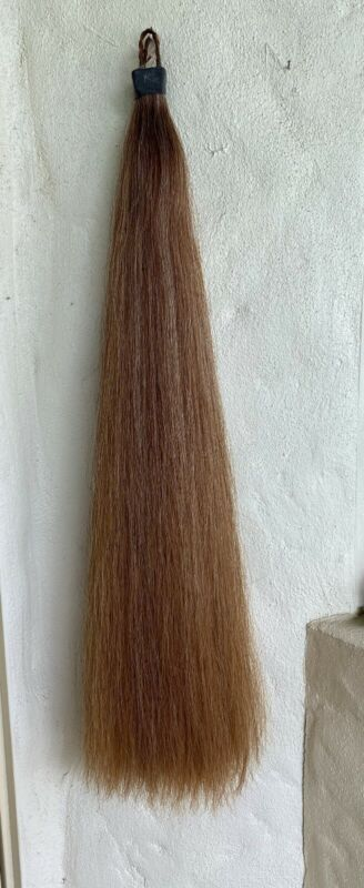 AQHA Horse Tail Extension by Kathy
