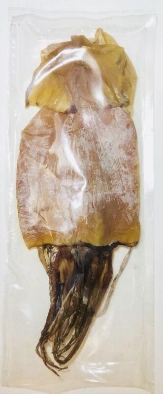Dried Argentina Squid 阿根廷魷魚幹 1 / 5 / 9 LB - Free US Shipping