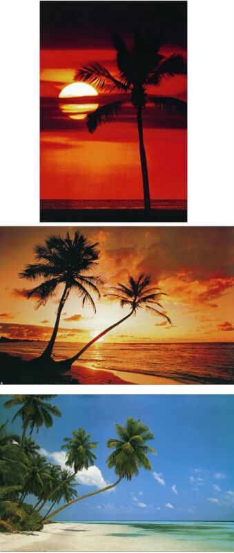 Set of 3 Original Large 35x23 inch Tropical Beach Scene and Sunset Poster Prints