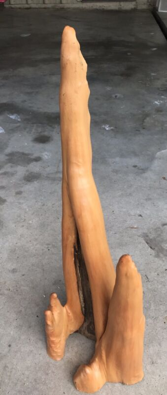 """REALLY COOL 30"""" Five Pointed Louisiana cypress knee"""