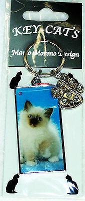 Designer Schlüsselanhänger Katze Perser Kätzchen Anhänger Katzen Mario Moreno