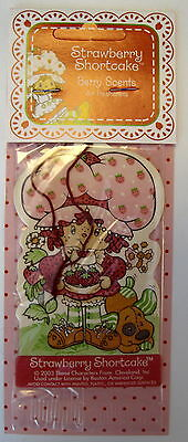 Strawberry Shortcake Air Freshener - 2003 - Vintage Style, Nrfp