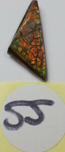 6.5 Cts Canadian Ammolite Ammonite Red Green Orange Pretty Cabochon Cab 26x11mm