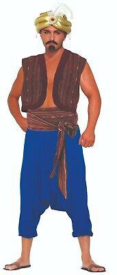 Desert Prince - Aladdin Vest & Belt Costume Accessory](Desert Costume)
