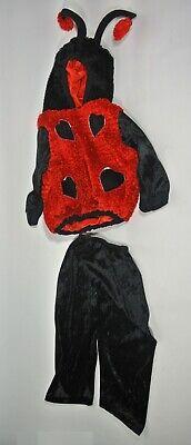 Two Girl Halloween Costume (Girl 24 MONTHS Halloween Long Sleeve Two Piece Ladybug Costume Hearts Hood)
