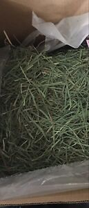 (NO MORE WASTE!) WESTERN TIMOTHY HAY 3RD CUT ARRIVING NEXT WEEK