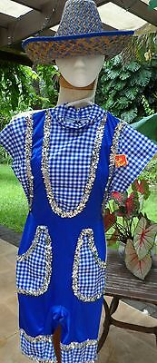 Blue/Wht Checked Country Girl Daisy Duke Costume w/Straw Hat & BackPatches - Daisy Duke Costume