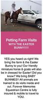 Petting Farm Visits with the Easter Bunny