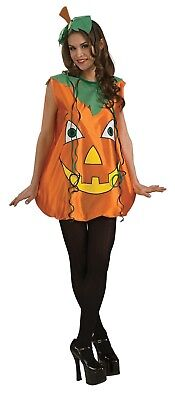 Pumpkin Pie Adult Womens Costume Standard Size NEW (Pie Costumes)