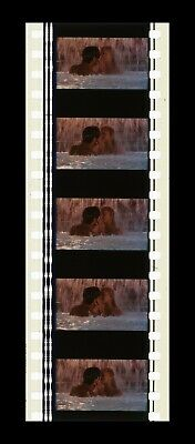 SHOWGIRLS - 35mm 5 Cell Filmstrip - RARE 12