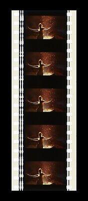 SHOWGIRLS - 35mm 5 Cell Filmstrip - RARE 49