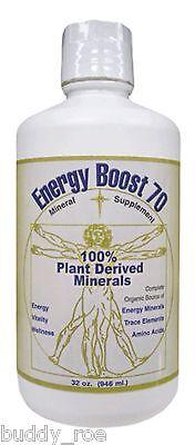 Morningstar Minerals Energy Boost 70 Fulvic Acid Natural Supplement 32 Oz