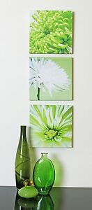 Lime-Green-Chrysanthemums-Flower-Floral-Set-of-of-3-Canvas-Wall-Art-Pictures