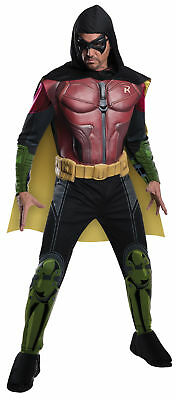 Robin Arkham Adult Mens Costume Classic Movie Superhero Theme Party Halloween](Classic Movie Costumes Halloween)