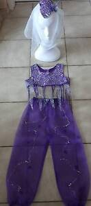 Costume: Genie/Harem  - Purple & Silver Fits size 6 - 7 years Greenwood Joondalup Area Preview