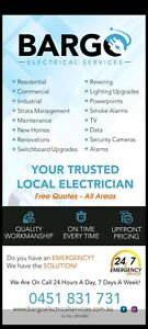 PROFESSIONAL AND CLEAN ELECTRICAL SERVICES ( LICENCED ELECTRICIAN)