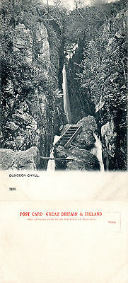 1920's DUNGEON GHYLL LANGDALE VALLEY CUMBRIA UNUSED POSTCARD