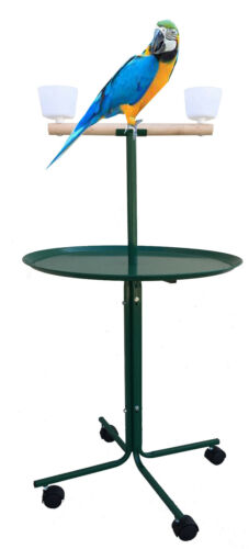 47-Inch Large Parrot Play Perch Stand Feeder Bowls Metal Tray Rolling Wheels GN