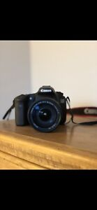 Canon 60d with 18-135 lens and photo bag