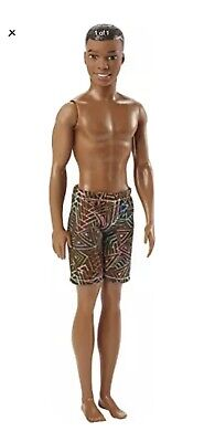 Barbie Water Play Beach Doll, Male