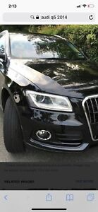 Audi Q5 with driver avilable for ride to falls or airport