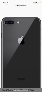 Looking for iphone 8 plus