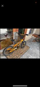 Giant kids bike
