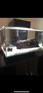Fluval fish tank, stand, many accessories
