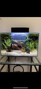 Fish Tank 21L