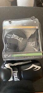 Everlast Boxing Glove and Mitt combo