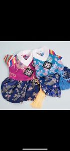 Korean hanbok outfit for dogs