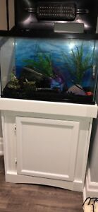 Fish Tank 20 Gallon and Stand