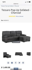 L shaped couch/ pull out bed