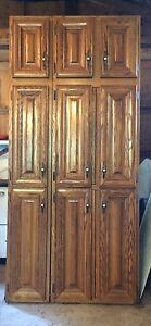 Large cabinet with oak doors