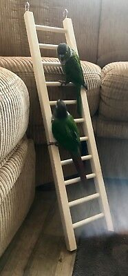 "Bird Toy, Bird Ladder ~ For Pet Birds, Sturdy Pine,                   24"" x 5.5"""