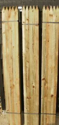 10 x 1.5m (5ft) tall square garden tree stakes - HC4 pressure treated