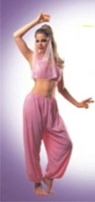Arabian Princess Jasmine Belly Dancer Fancy Dress Costume in Pink One Size