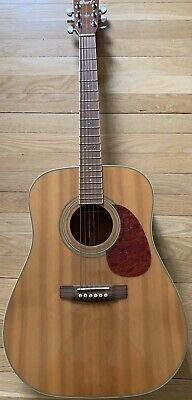 Cort 6 String Acoustic Electric Guitar Earth 190 with Case