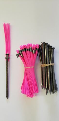 Survey Markers Pink 6 Inch Whiskers with 60D Nail Ground Stakes